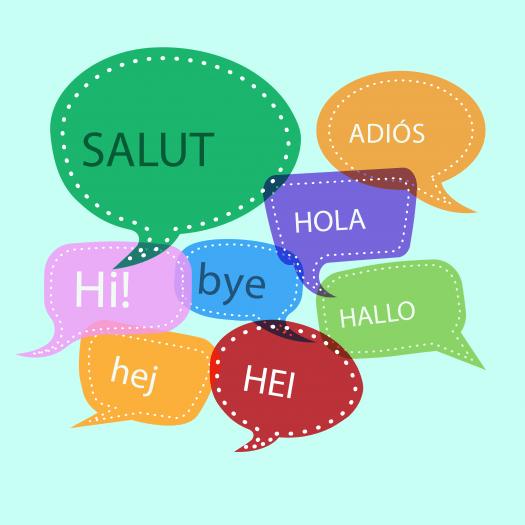 Dil Nedir ? Ne Değildir?