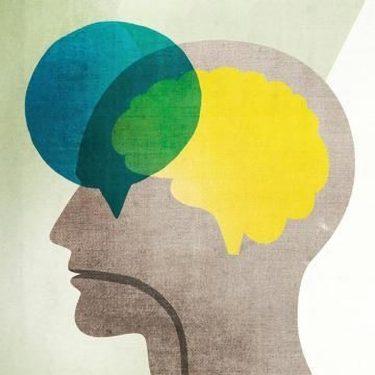 Gelişimsel Dil ve Konuşma Bozukluğu