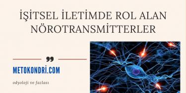 İşitsel İletimde Rol Alan Nörotransmitterler