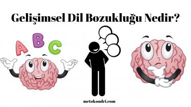 Odyologlar için Gelişimsel Dil Bozukluğu 2020